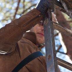 Inkilėlių kabinimo akcija, 2011-03-27, medis, Povilas Velikis