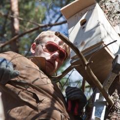 Inkilėlių kabinimo akcija, 2011-03-27, inkilas, medis, Povilas Velikis