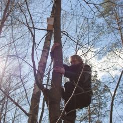 Inkilėlių kabinimo akcija, 2011-03-27, inkilas, medis, Vytautas Švažas