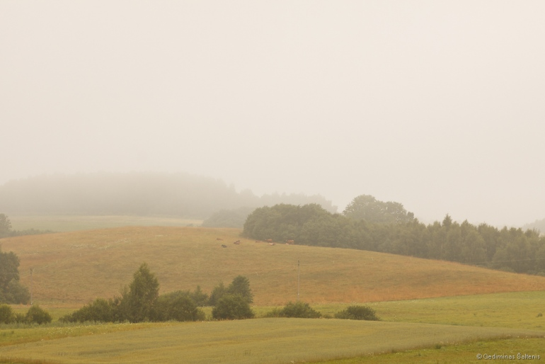 2011, Lietuva, Lithuania, Burbiškis, rytas, morning, mist, rūkas, laukas, field
