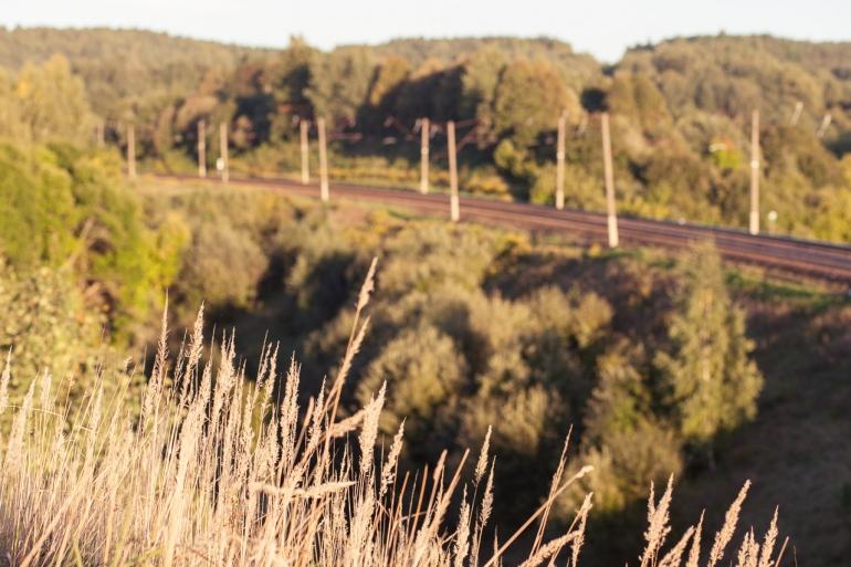 Vilnius, 2013, bėgiai, tracks, traukiniai, trains, traukinys, train, miškas, forest, Pavilnys