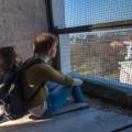 2011-Vilnius-Lietuva-Lithuania-Katedra-Cathedra-Vilnius-Cathedra-Katedros-bokštas-bell-tower-hdr-Jurgita-Pavilionytė-Chmieliauskienė